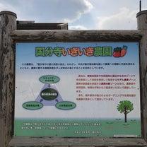 農園見学@西国分寺の記事に添付されている画像