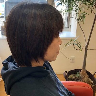 サラサラの髪で束感ショートの記事に添付されている画像
