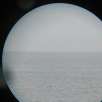 クジラを探しに来たけれど…の記事に添付されている画像