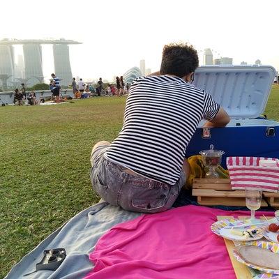 人生は、ピクニックだ。の記事に添付されている画像