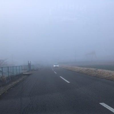 高遠の公園開きは3月23日から☆の記事に添付されている画像