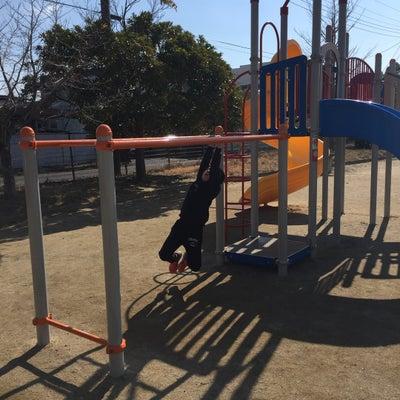 花粉症家族の公園でのあそび方♡の記事に添付されている画像