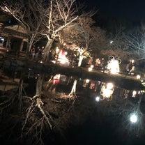 京都2日目2019~祇園~の記事に添付されている画像