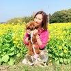菜の花畑で撮影会