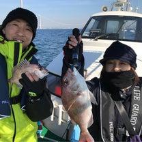 本日の釣果 鯛サビキの記事に添付されている画像