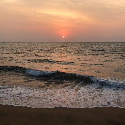 スリランカの旅の記事に添付されている画像