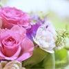 【お花の資格】フラワーセラピーを伝えるお花の仕事の画像