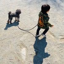 おうちモンテ 1歳7ヶ月 犬のお散歩の記事に添付されている画像