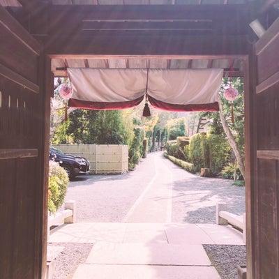 春の観光シーズン前の、静けさの京都ランチの記事に添付されている画像