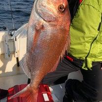 多目釣り!の記事に添付されている画像