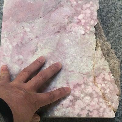 桜舞う石の記事に添付されている画像