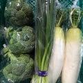 #野菜直売所の画像