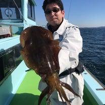 18日。アオリイカの釣果‼︎の記事に添付されている画像