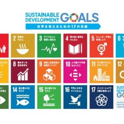 SDGsの記事に添付されている画像