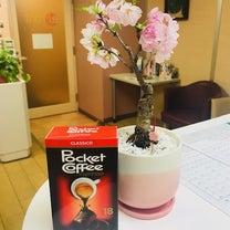 いただきました&桜盆栽の記事に添付されている画像