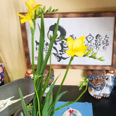 ここち茶和会の日程です♪の記事に添付されている画像