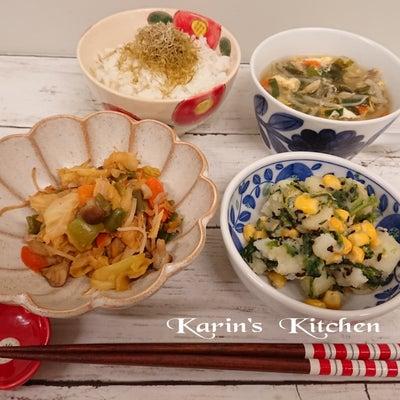 ‡2458-回鍋肉と鯖カレー煮の記事に添付されている画像