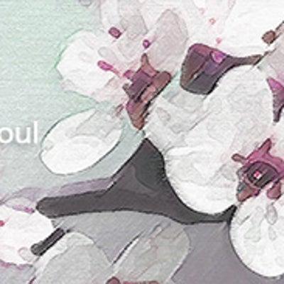 樹木希林さん内田裕也さんはツインソウル?の記事に添付されている画像