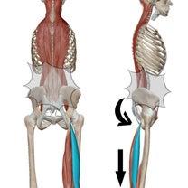 疼痛は結果であり原因ではない。の記事に添付されている画像