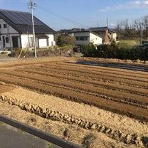 新規圃場の進捗♪その②畝立て・マルチ張り190314の記事に添付されている画像