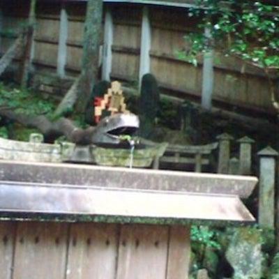 伏見稲荷の参拝の仕方と穴場は?富士川碧砂監修京都最強パワースポット‼️の記事に添付されている画像