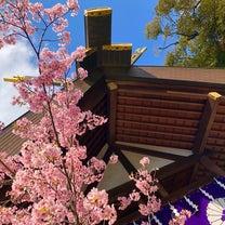リュウ博士とそらみつ大学東京大神宮正式参拝へ♡の記事に添付されている画像