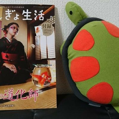 きんぎょ生活/赤い魚の記事に添付されている画像
