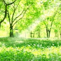 祝福の水路となる!の記事に添付されている画像