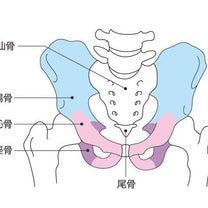 生理痛は骨盤の歪みから?の記事に添付されている画像