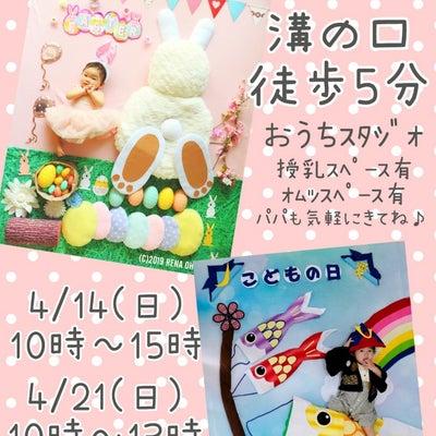 ♡イースタ―/こどもの日(こいのぼり)撮影会募集開始♡の記事に添付されている画像