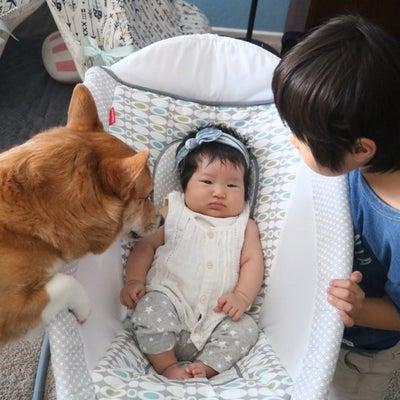 赤ちゃん見守り隊の記事に添付されている画像