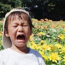 思い通りにならないと泣きわめく子どもへの対応はこれ!の記事に添付されている画像