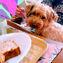 ばあやの朝食を狙う愛犬の記事に添付されている画像