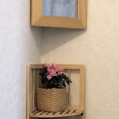 インテリア壁掛け仏壇と季節のお花:ピンクのアザレア(西洋躑躅)の記事に添付されている画像