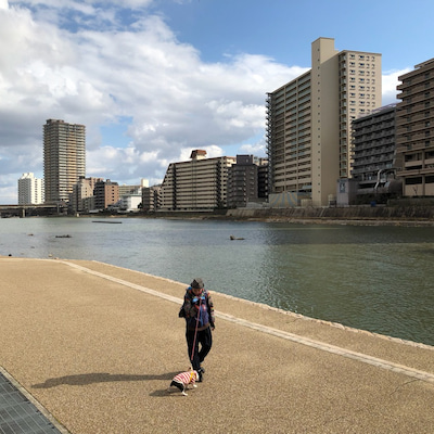 モモ、快適散歩‼️の記事に添付されている画像
