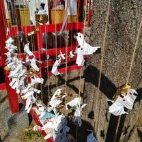 かわいい❗おみくじがこうのとりの神社 パート1の記事に添付されている画像