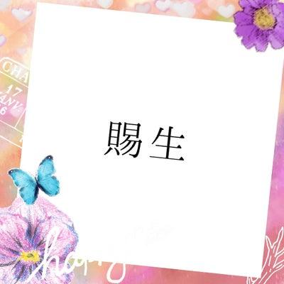 ☆キラキラ通信☆ 賜生の記事に添付されている画像