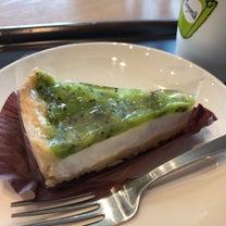 ダイエット中でも大丈夫♡スタバさっぱりケーキが美味‼︎の記事に添付されている画像