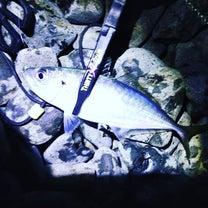 先週末の釣行備忘録の記事に添付されている画像