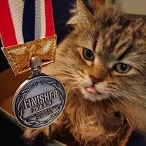 メダルコレクション☆ホムパの記事に添付されている画像