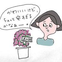 花屋のおばちゃん③〜予算に合わせて〜の記事に添付されている画像