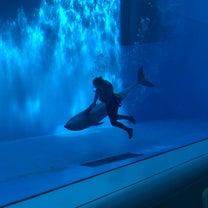 1y10m☆水族館②の記事に添付されている画像