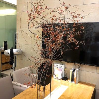 ヘアサロン・peek-a-boo 定期装花の記事に添付されている画像