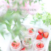 LIVING PHOTO INTERMEDIATE で写真のお勉強の記事に添付されている画像