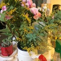 ミモザの花の記事に添付されている画像