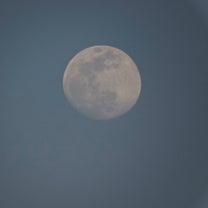 ★3月19日(火)のお月さまの記事に添付されている画像