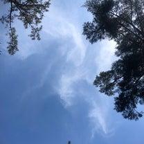 天橋立神社〜籠神社〜真名井神社って凄いぞの記事に添付されている画像