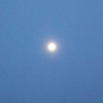 月と桜の記事に添付されている画像