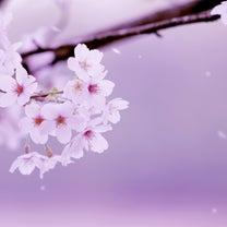 """""""""""3月21日・午前6:58春分瞑想&同21日・23時45分満月瞑想""""""""の記事に添付されている画像"""