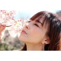 平塚撮影第2弾の記事に添付されている画像
